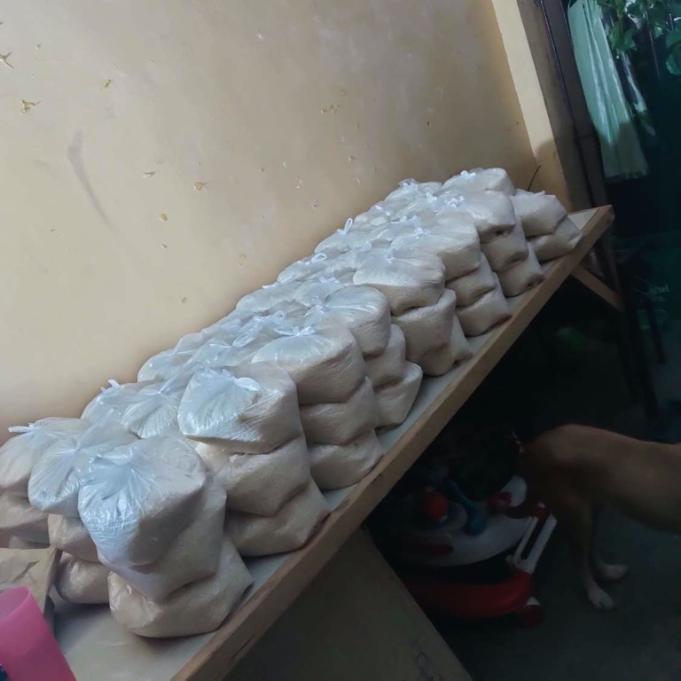 This is what a couple hundred pounds of rice looks like.